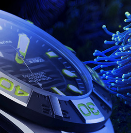 Technomarine Reef watch